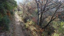 [Bouches-du-Rhône] Entre Garlaban et Etoile Le départ se fait du parc départemental de Pichauris idéalement situé entre massif du Garlaban et massif de l'Etoile. Le parcours emprunte au début le circuit VTT balisé n°6. Arrivé aux Grands Chênes, descendre par le petit sentier dans le vallon de l'Oule. Attention au petit coup de cul dans la descente. Au bout du sentier, on remonte par une petite piste sur la gauche qui, partant du fond du vallon, s'élève en balcon pour nous offrir de beaux…