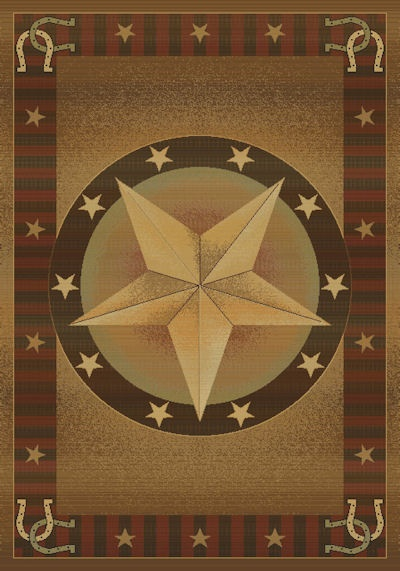 Texas Star Area Rug You Would Look Nice In My Home!