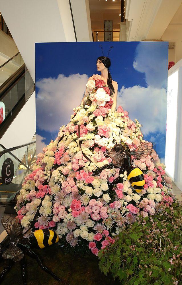#davidjones #flower #spring #attraction #floral #summer #beauty #scent #flora