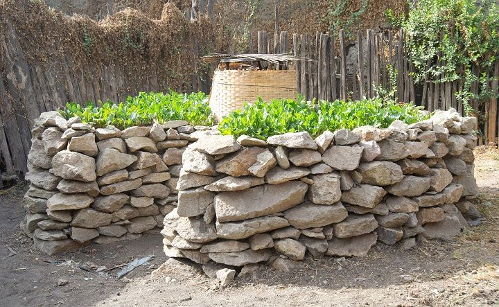 A keyhole garden in Ethiopia. Keeping a lid on the center well will retain heat and reduce evaporation. dsnyderphotography.com