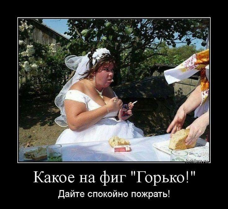замазали шпаклевкой смешные фото сельских свадеб гости крыма, тупая