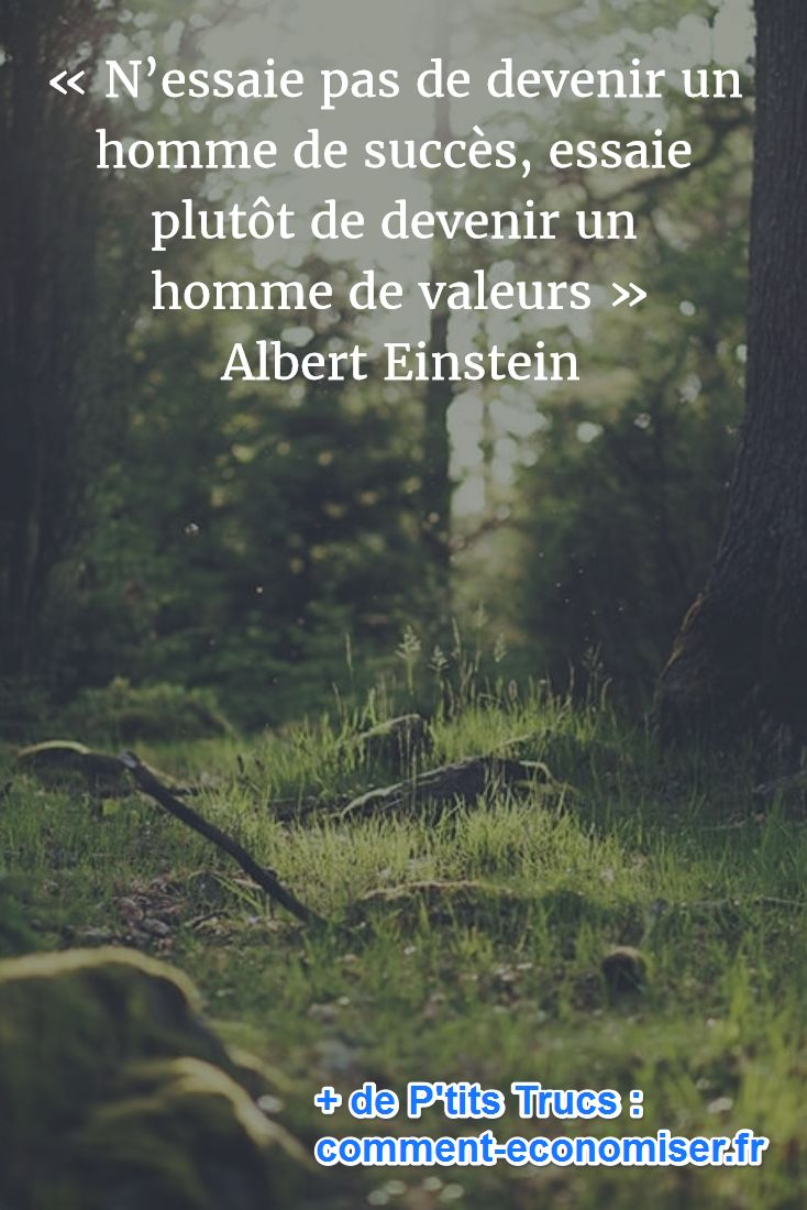 « N'essaie pas de devenir un homme de succès, essaie plutôt de devenir un homme de valeurs » Albert Einstein