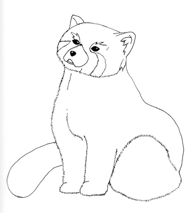 cute panda coloring pages httpfreecoloring pagesorgcute