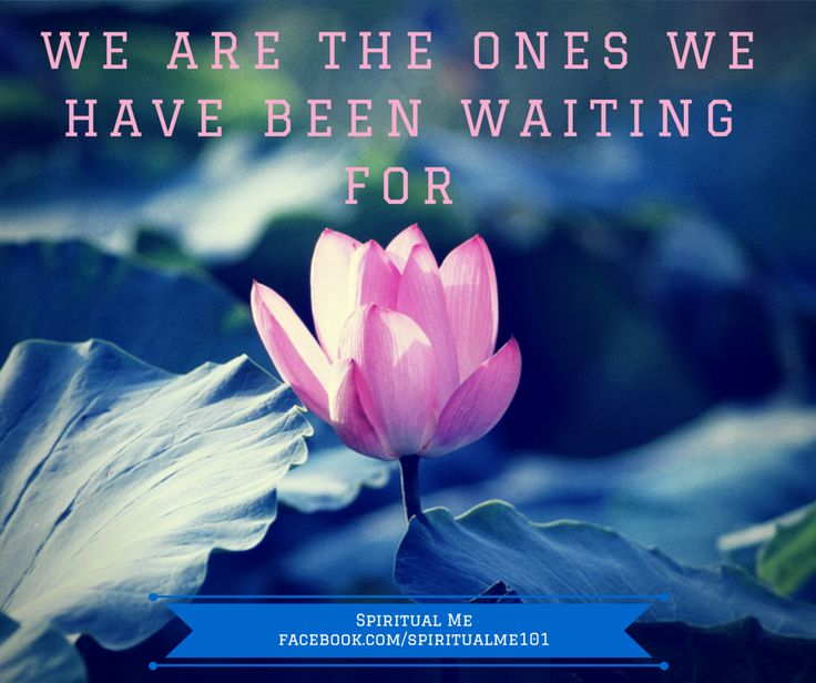 We are the ones we have been waiting for  No one will rescue us We need to make positive changes within ourself which will change the world  SpiritualMe101.com #SpiritualMeGoals #SpiritualMeSquad  facebook.com/spiritualme101