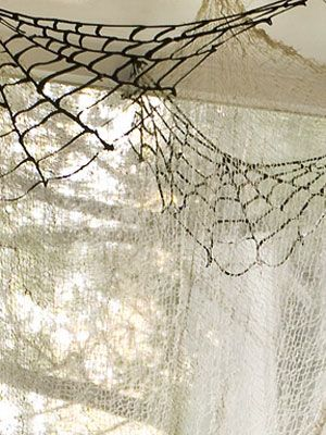 1000+ images about spider webs on Pinterest | Rain storm, In the ...
