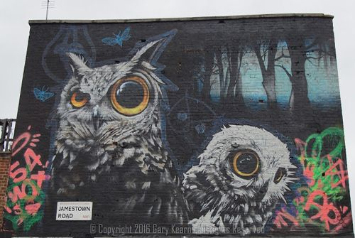 Awesome Owl Artwork by Street Artists
