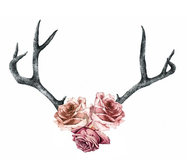 floral antlers tattoo - Google Search