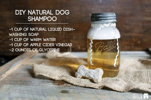 DIY Natural Dog Shampoo   Here's a great recipe for the pets who share in your life, to now share in your natural, cheap, & healthy DIY lifestyle! Recipe right on the picture to make sure you have the ingredients ready to go!
