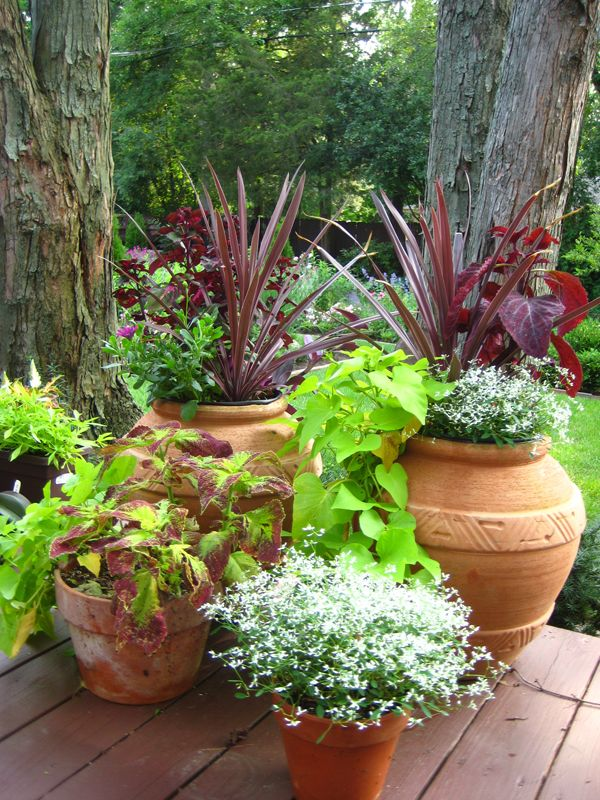 ideas for the deck whimsical garden containers planting ideas