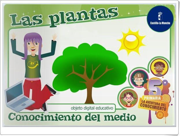 Las plantas (Junta de Castilla la Mancha)