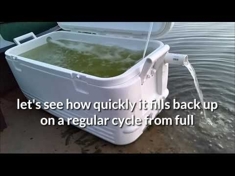 Homemade cooler livewell - YouTube