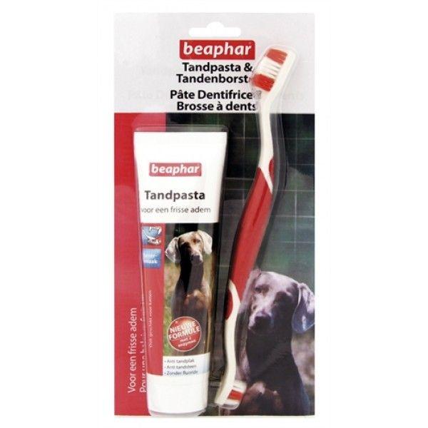 Beaphar Tandpasta met leversmaak biedt totale bescherming voor het gebit van uw hond of kat. De pasta gaat tandplak en de vorming van tandsteen tegen en zorgt daarnaast voor een frisse adem.