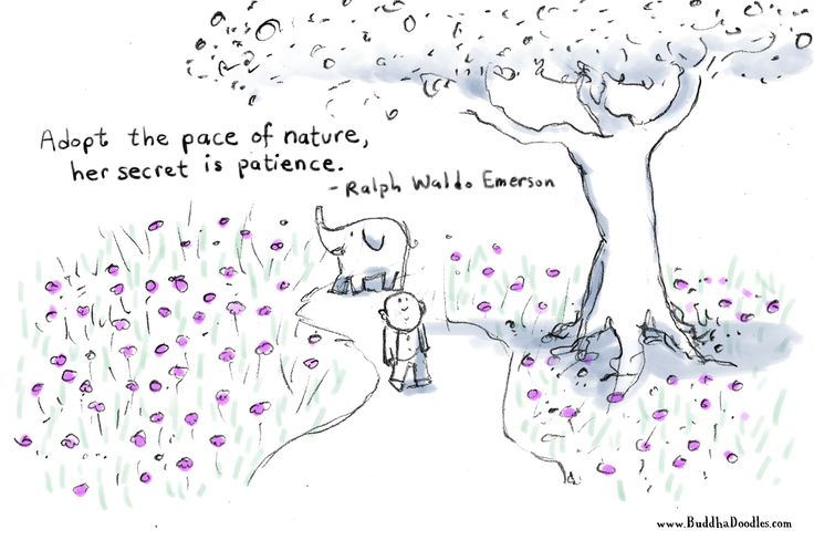 Today's Buddha Doodle: Pace of Nature