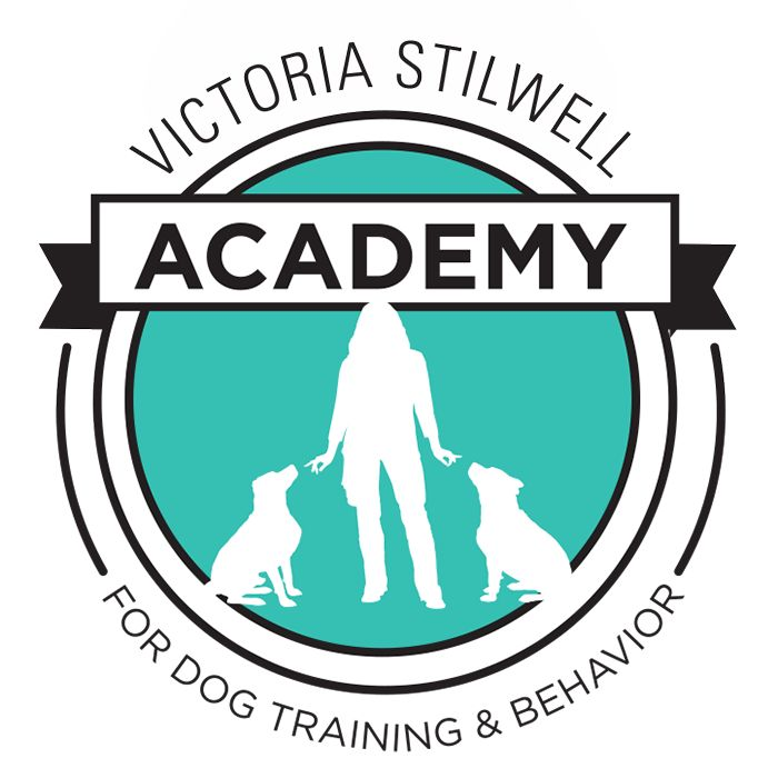 At long last, I am thrilled to announce the official launch of the Victoria Stilwell Academy for Dog Training and Behavior!