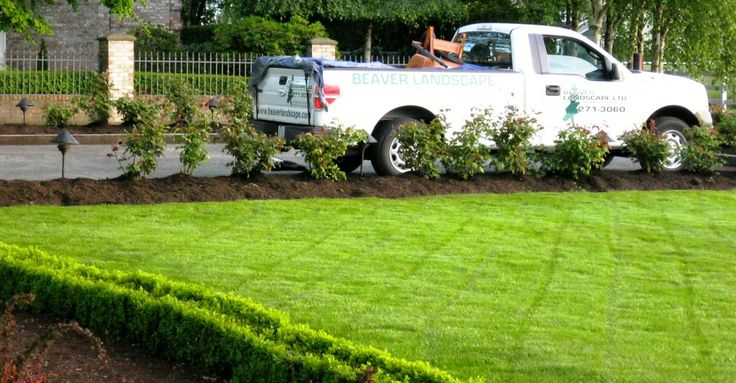 New Lawn by www.beaverlandscape.com in Richmond, BC