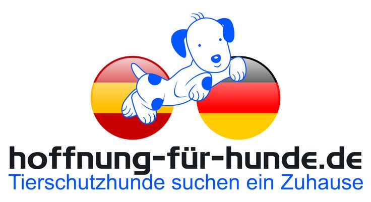 Wir setzen uns sehr für spanische Hunde aus spanischen Tierheimen ein, versuchen für diese liebenswerten Geschöpfe Familien zu finden. www.hoffnung-für-hunde.de