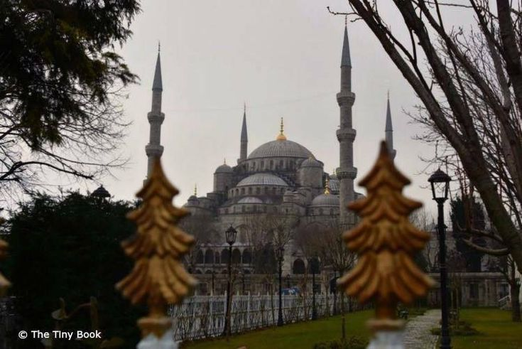 The Blue Mosque from the distance.