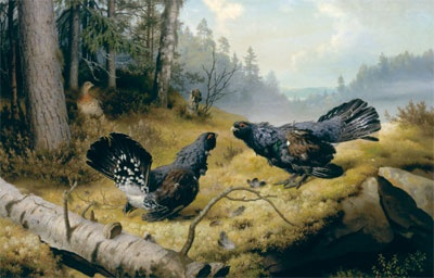 Taistelevat metsot (The Fighting Capercaillies) (1886) by Ferdinand von Wright | Ferdinand von Wright (March 19, 1822 — July 31, 1906) was a Finnish painter. He is known especially for his paintings of birds and landscapes, but he was also a portrait painter.