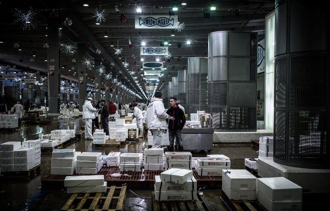 Une centaine de travailleurs sans-papiers occupent depuis 6h ce matin le centre administratif du marché de Rungis. Accompagnés par la CGT du Val-de-Marne (94), ils demandent la régularisation de tous les salariés sans-papiers travaillant sur place