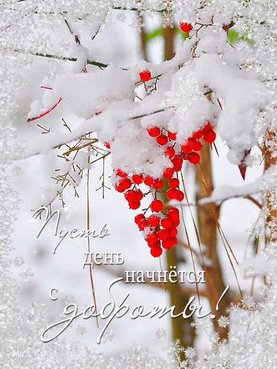 снежная осенняя картинка с добрым утром закрытыми