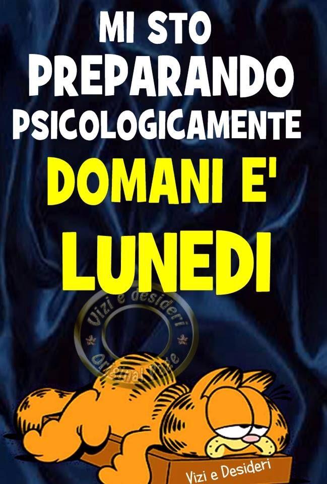 Mi sto preparando psicologicamente Domani è Lunedì #domanielunedi garfield