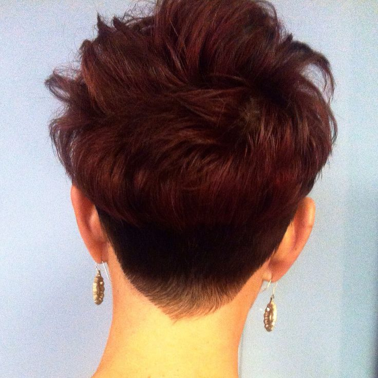 #pixie cut back view with a #fade #undercut