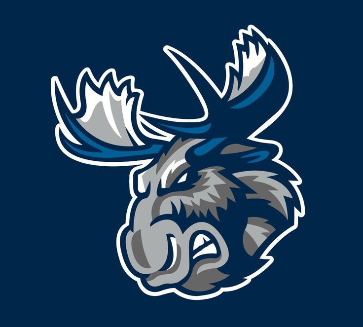 187 best Sports Team Logos images on Pinterest | Hockey ...