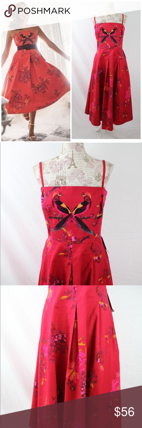 """Eva Mendes Red Pheasants """"Del Mar"""" Dress NEW Large Eva Mendes New York & Co. Del Mar dress in red pheasant, sz. Large. """"A beloved look is back! The latest iteration of Eva's most-loved Del Mar strapless dress features [a pheasant &] floral print; the pleated A-line skirt ensures a flattering fit. overview * Straight neckline with boning. * Detachable Straps/ or Strapless. * Fitted bodice with pleated A-line skirt. * On-seam pockets. * Invisible center back zipper. * Pleated silhouette…"""
