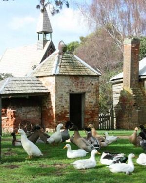 World Heritage listed Brickendon is a working farm.