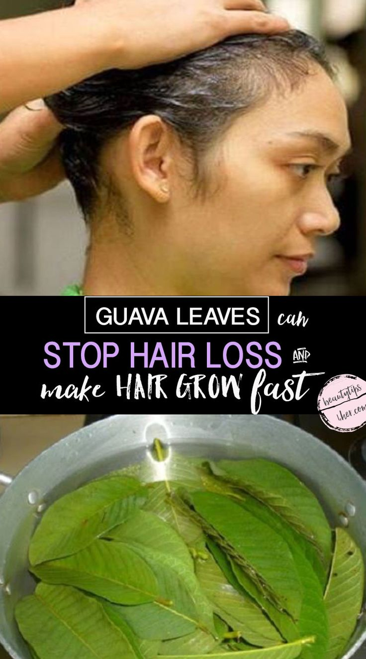 Just making a tea from the leaves and applying it to your scalp can not only help promote hair growth but also prevent hair loss.