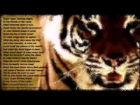 Тигр, тигр... Уильям Блейк