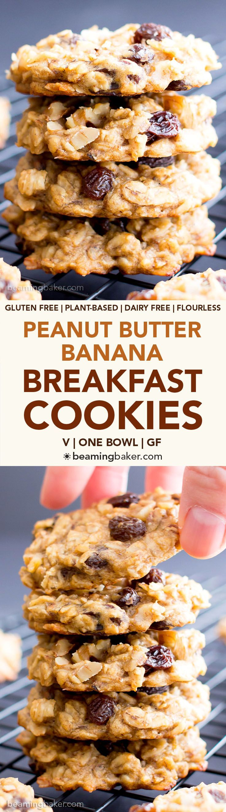 Easy Vegan Peanut Butter Banana Breakfast Cookies (V, GF): a one bowl recipe for chewy, protein-rich banana cookies, plus a great excuse to eat COOKIES for breakfast!