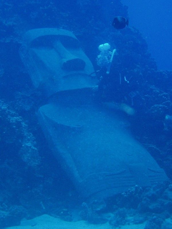 scuba diving at Easter Island - I've never seen one of these underwater before.  @Shereice Rahman Rahman Rahman Harker Island how did this statue get underwater
