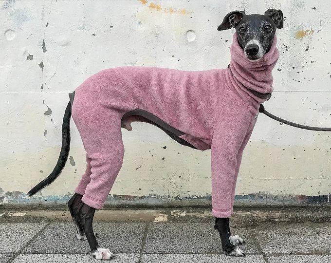 Weimaraner Dog Socks