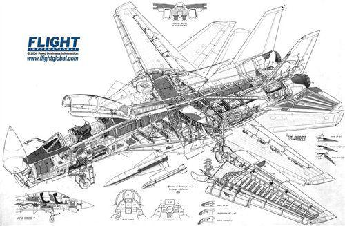 Grumman F-14 Tomcat Cutaway