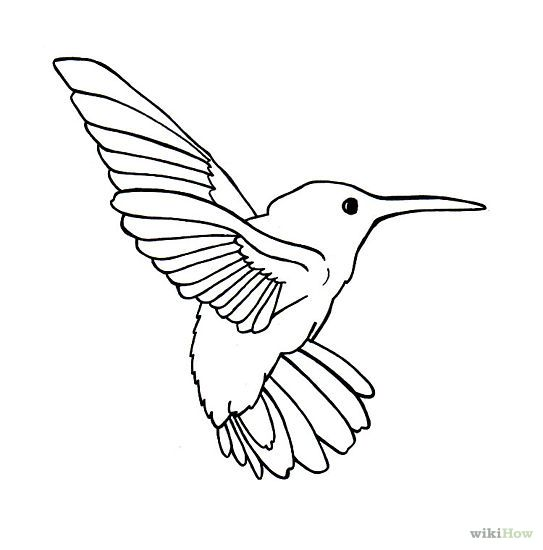 simple bird drawing - Google Search