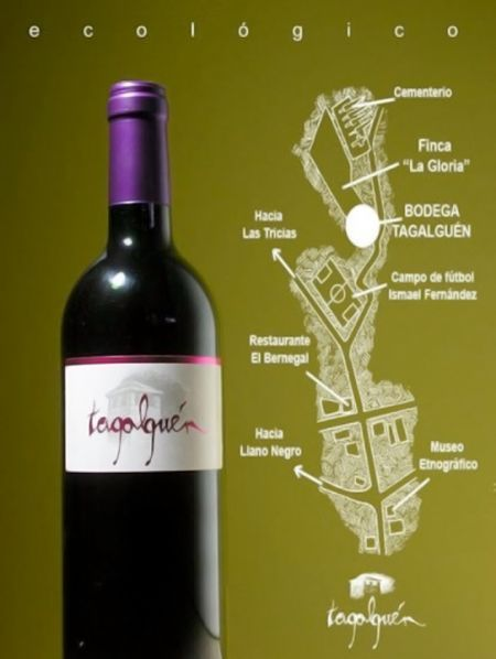 """Tagalguén 2012, el único caldo palmero que figura en el libro """"Vinos naturales de España"""""""
