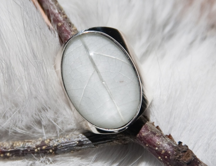 4 Seasons Ring - Winter. Leaf, Resin, Silver. By Pantheia
