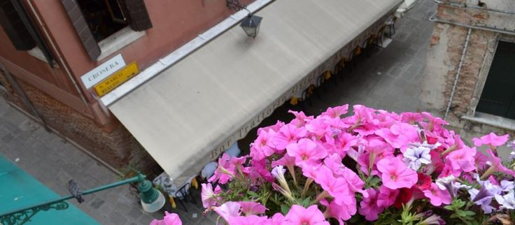 A nice view from Our Hotel.  #venice #hotelvenice #venezia #hotelsansamuele  www.hotelsansamuele.com