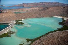 La Baja California : Mexcapade - Spécialiste de la Basse Californie
