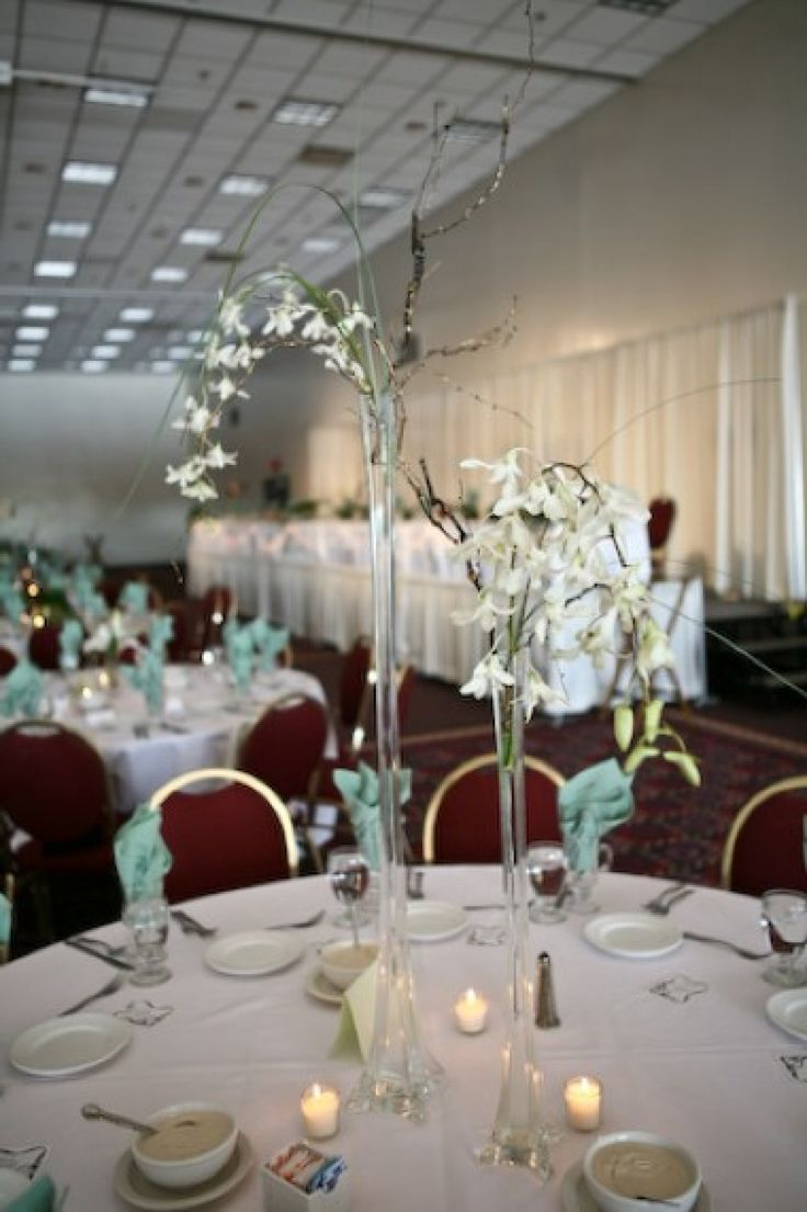 1607 best images about wedding on pinterest reception for Cheap reception decorating ideas