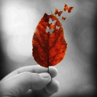 leaf cutouts with punches.  I would use a colored leaf as in the picture.