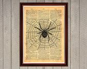 Spider spiderweb insect animal  nature print Rustic decor Cabin Vintage Retro poster Dictionary page Home interior Wall 0024