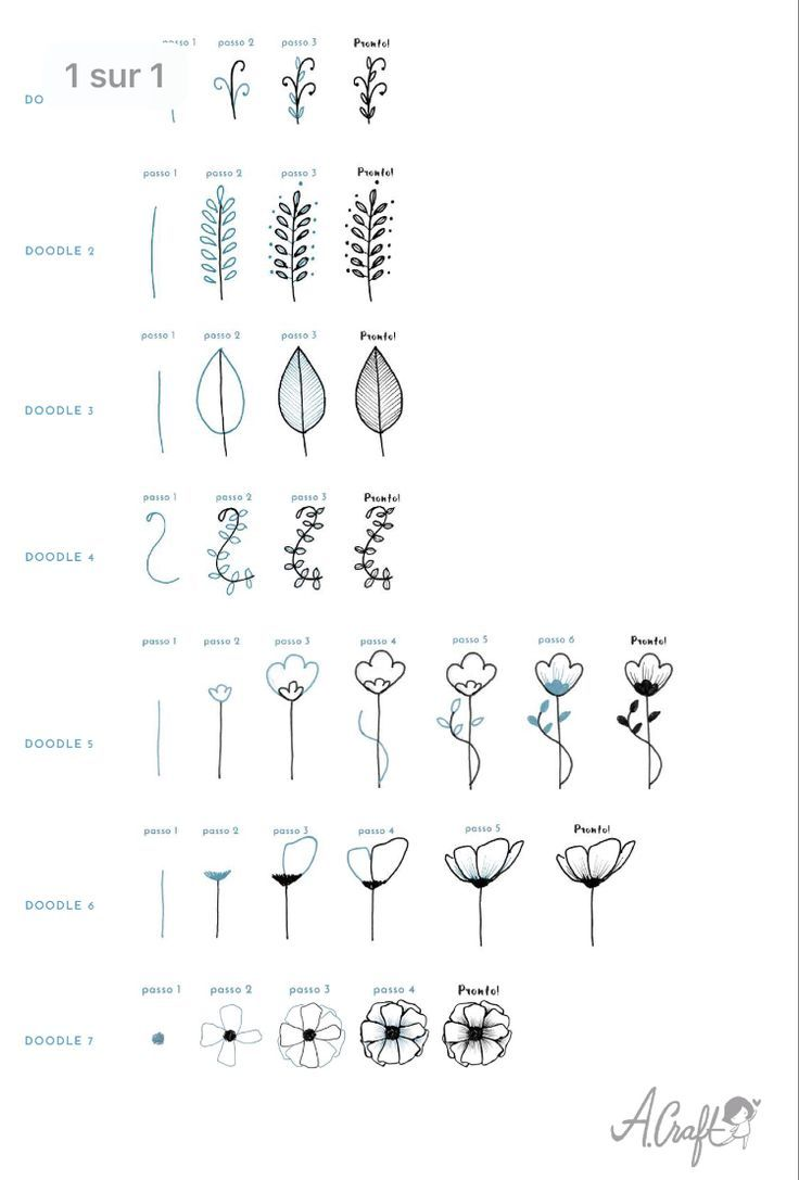 cute botanical drawings – #bota …