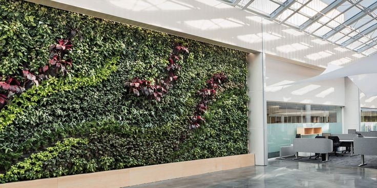 BD Biosciences Living Wall by Habitat Horticulture - View 3