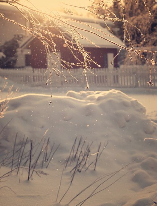 Beautiful winter snow scene <3 #winter #snow