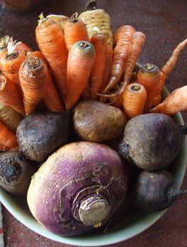 High fiber foods list