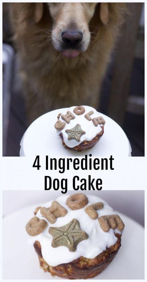 4 Ingredient Homemade Dog Cake Recipe Dog Stuff Dog