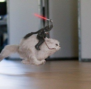 One of the most epic cat images Ive ever seen: Darth Vader, Cat, Stars War, Funny Stuff, Humor, Vader Riding, Kitty, Starwars, Animal