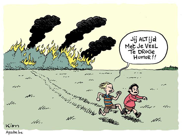 Cartoon: Droge humor